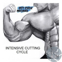 INTENSIVE CUTTING CYCLE